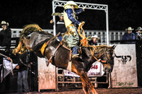2013-09-14 Performance Saddle Bronc